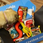 Khaleesi's January #PetBox in Detail