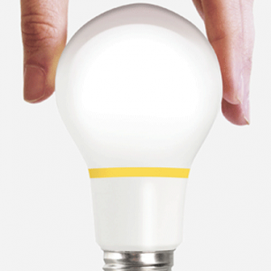finally bulb