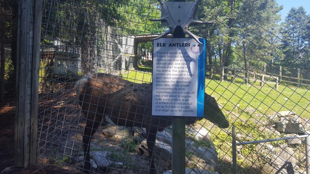 Hersheypark ZooAmerica