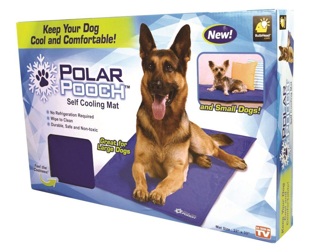 polar-pooch