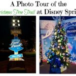 A Photo Tour of the Christmas Tree Trail at Disney Springs | #DisneyHolidays #DisneySprings