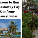 5 Reasons to Run the Castaway Cay 5K on Your #DisneyCruise | #runDisney