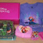 Why We Love Our Pley Disney Princess Box Subscription