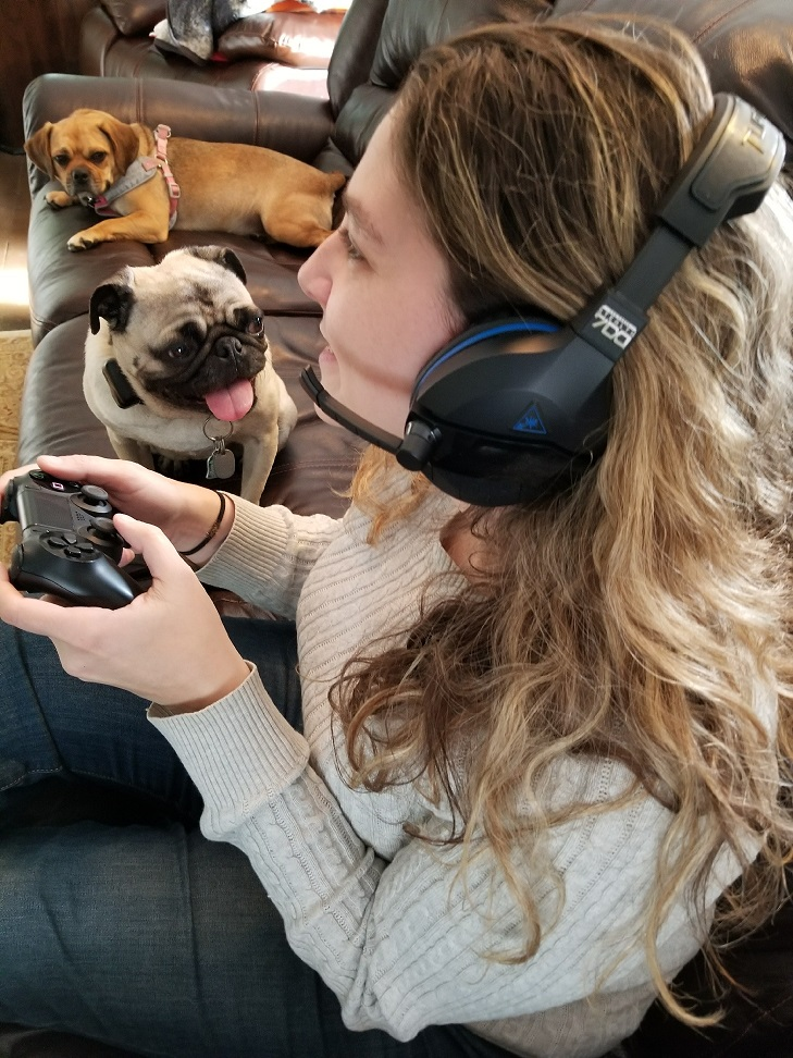 PS4 Turtle Beach Stealth 700 Gaming Headset