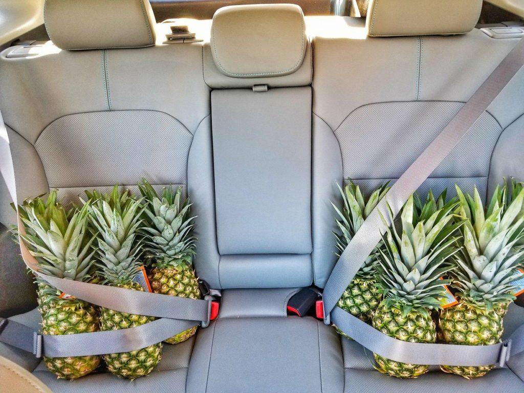 Kia Niro Road Trip Pineapples Backseat