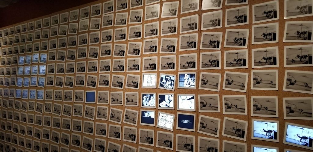 Walt's Sketches Disney Family Museum