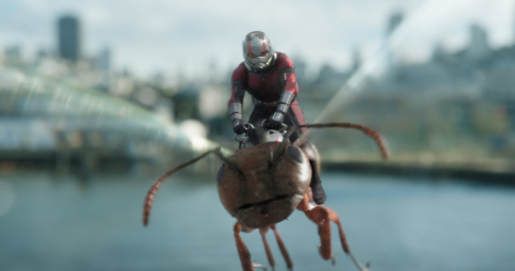 ant-man and the wasp flying ant