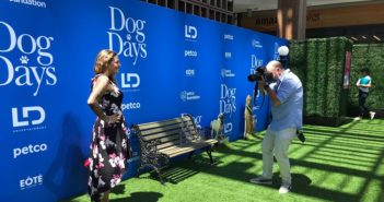 Dog Days Green Carpet Premiere Mama's Geeky