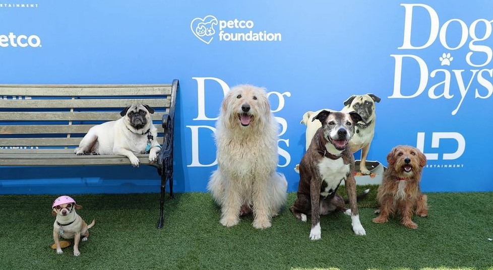 Dog Days Premiere Dog Cast