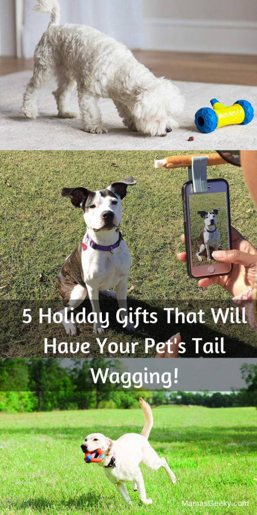 5 Holiday Gifts That Will Have Your Pet's Tail Wagging!
