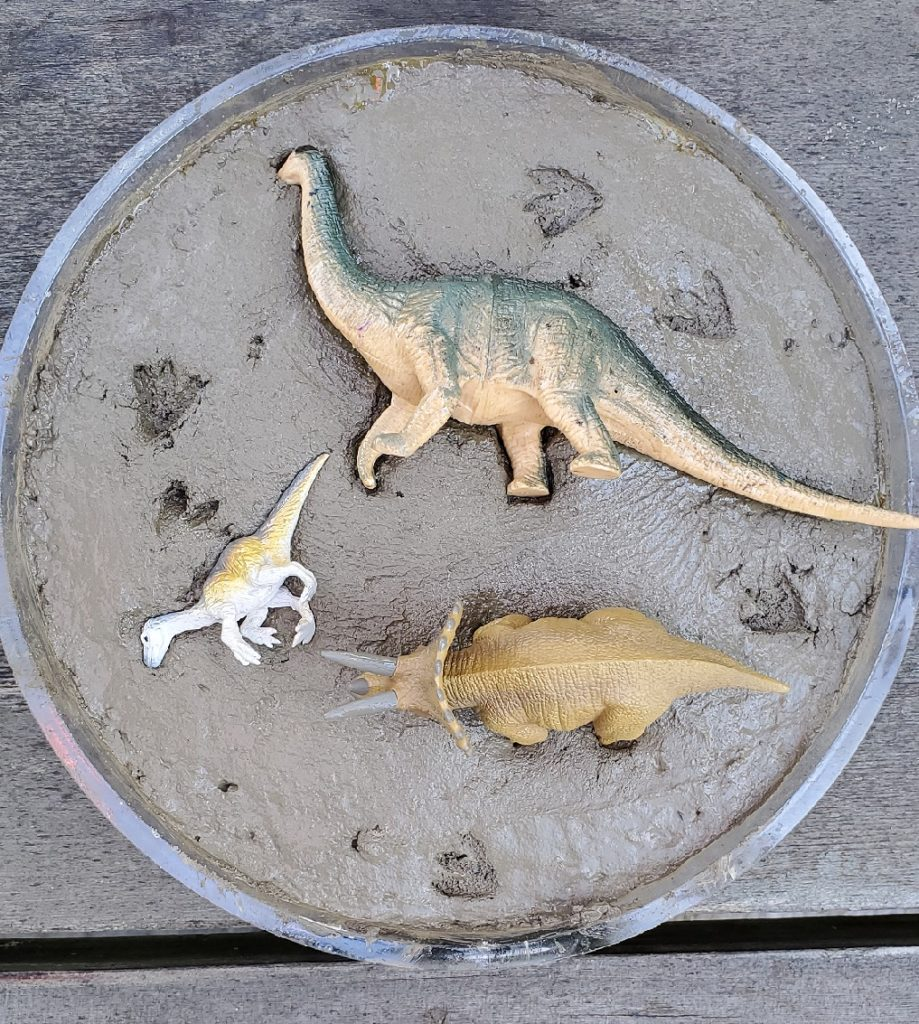 DIY Dinosaur Stepping Stones