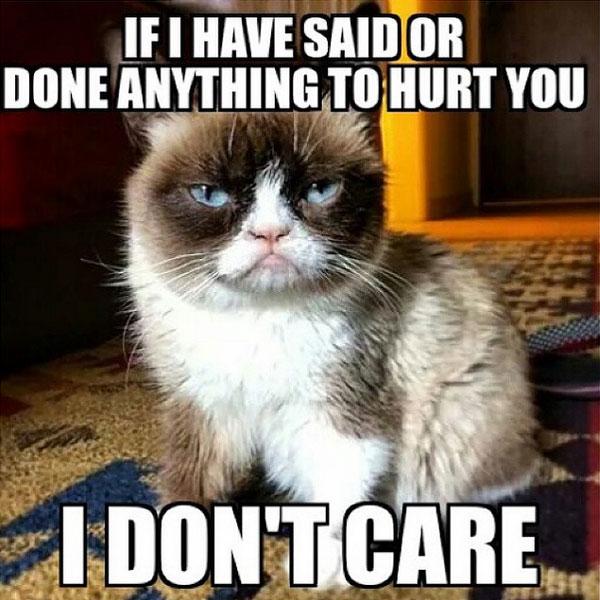 Grumpy-Cat-Meme-Dont-Care