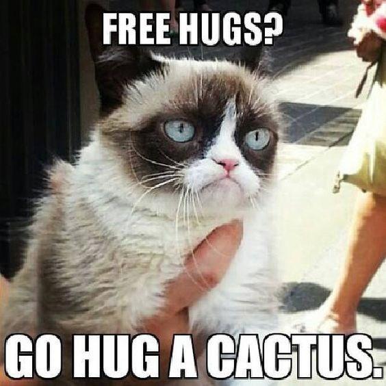 Grumpy-Cat-Meme-Hugs