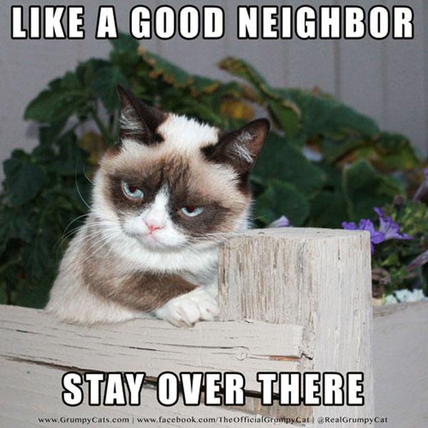Grumpy-Cat-Meme-Neighbor