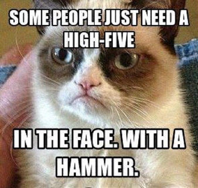 Grumpy-Cat-Meme-high-five