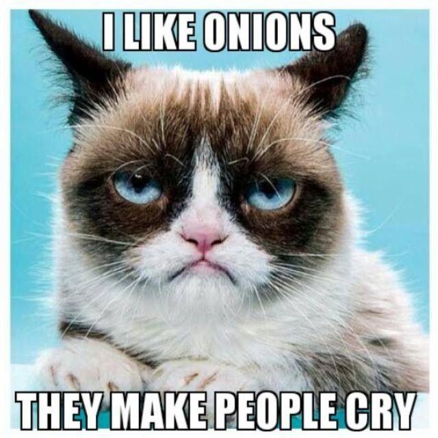 Grumpy-Cat-Meme-onions