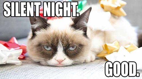 Grumpy-Cat-Meme-silent-night