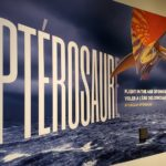 What to Expect from the Pterosaur Exhibit at the Canadian Museum of Nature