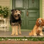 Disney+ Lady and The Tramp Review: Updated For The Present World