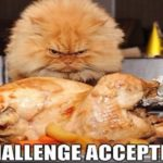 25+ Hilarious Thanksgiving Memes That Will Make You Giggle