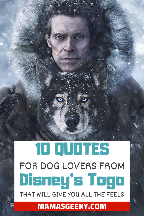 dog lover quotes togo