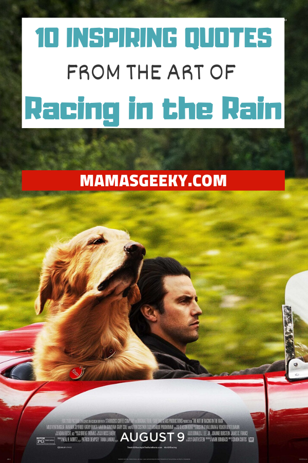 the art of racing in the rain  inspiring quotes