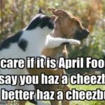 The Best & Funniest April Fool's Day Memes