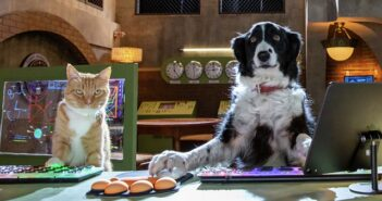 cats & dogs 3 review