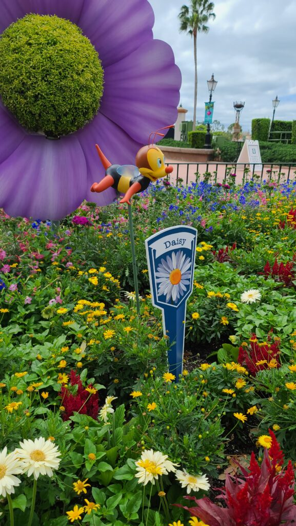donald daisy topiary spike